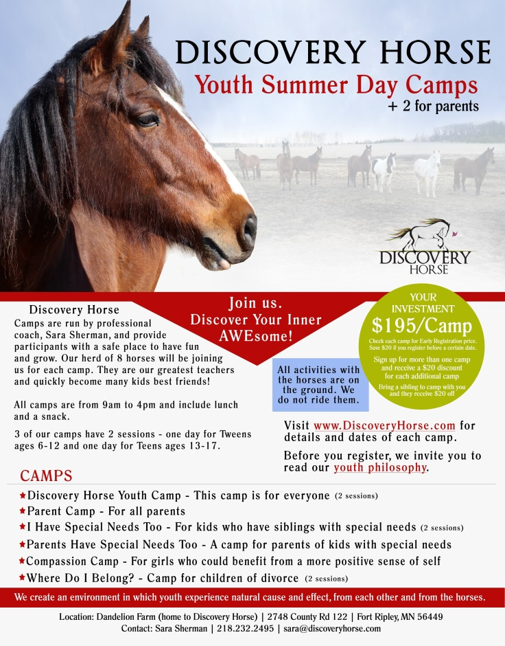 Discovery Horse Camp.jpg